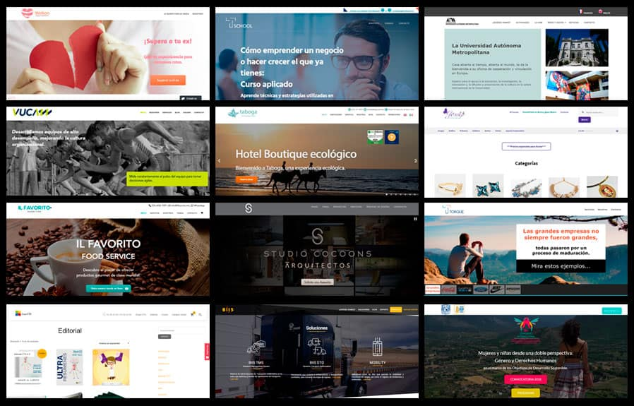 ejemplos de sitio web diseñados por lluvia digital
