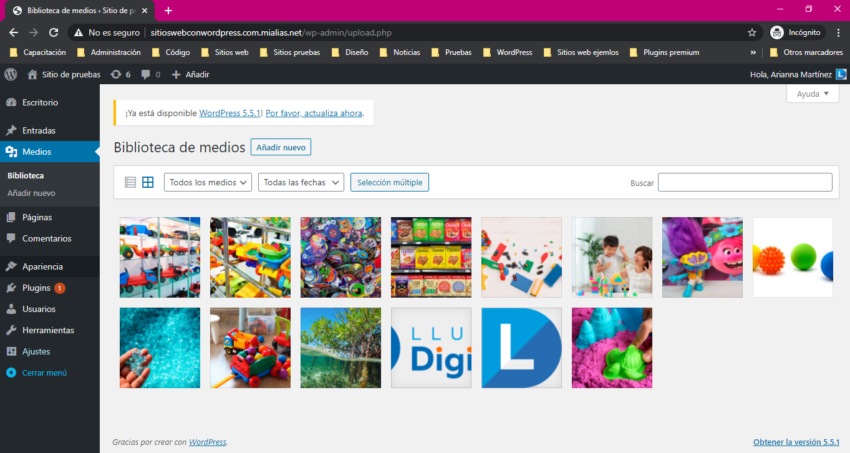 Sección biblioteca de medios en panel de administración de WordPress